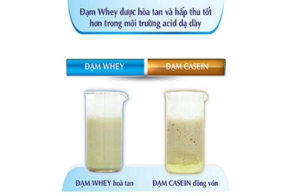 Thành phần đam Whey có trong sữa Peptamen giúp hấp thu tốt hơn trong môi trường acid dạ dày