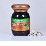 Spring Leaf Ginkgo Biloba 2000mg – Viên uống hỗ trợ cải thiện tuần hoàn máu não