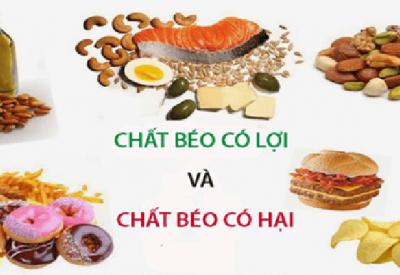 Thực phẩm giàu chất béo – Dưỡng chất quan trọng hay bị hiểu lầm