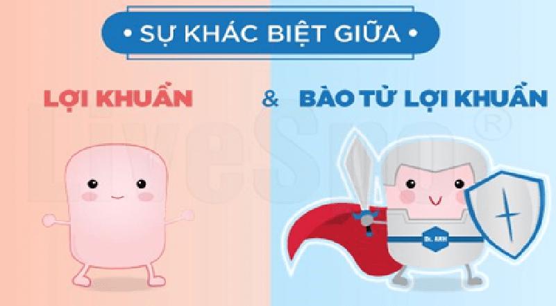 Sự khác biệt giữa lợi khuẩn thông thường và bào tử lợi khuẩn