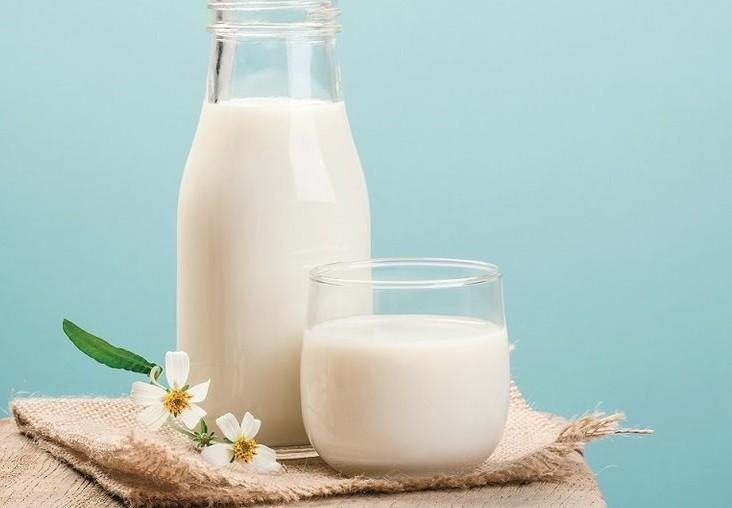 Sữa nên uống đúng cách