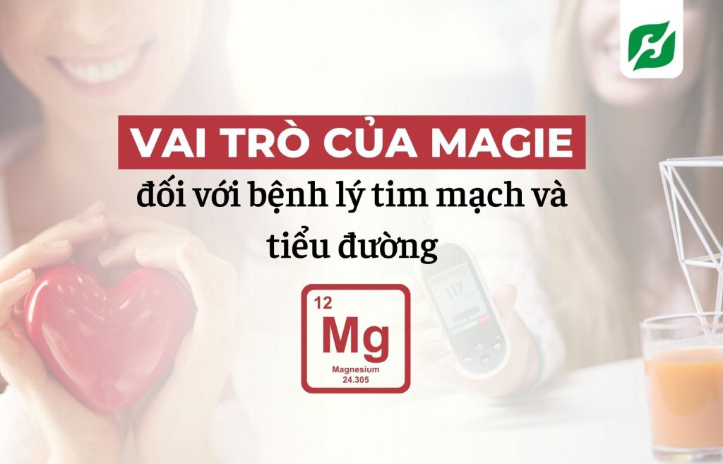 Vai trò của magie đối với bệnh lý tim mạch và tiểu đường